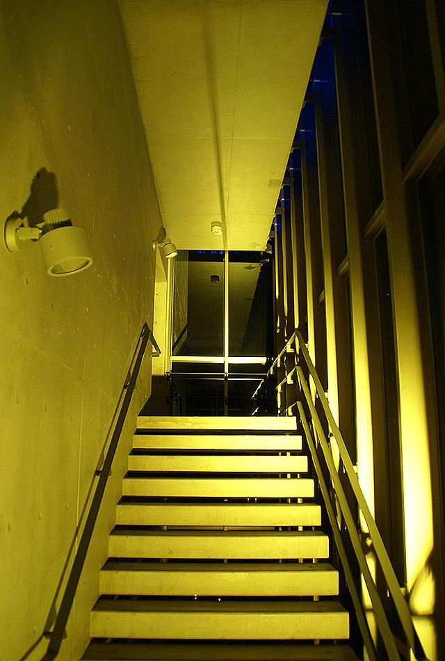 campusillumination09_20.jpg