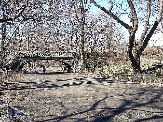 centralpark_2_bridge.jpg