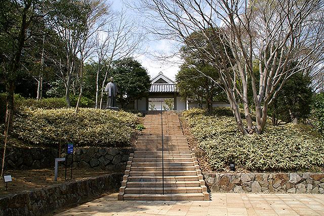 clematis_inoueyasushi.jpg
