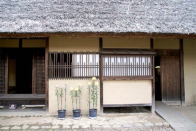 edotokyotatemonoen_w5_hachiouji.jpg