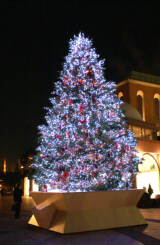egp_christmastree3.jpg