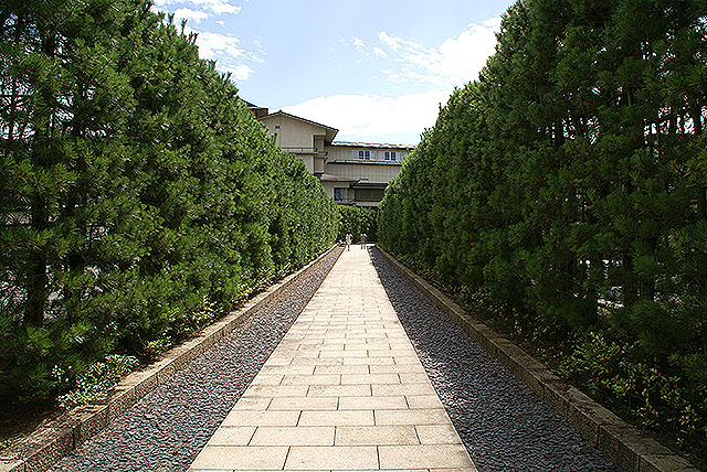 fujitakyohei_entranceroad.jpg