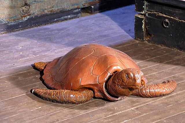 fukuryumaru_shipdeck_turtle.jpg