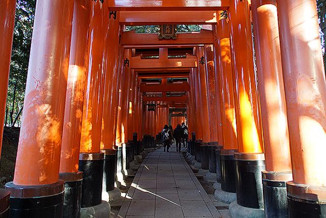 fushimiinari_torii0.jpg