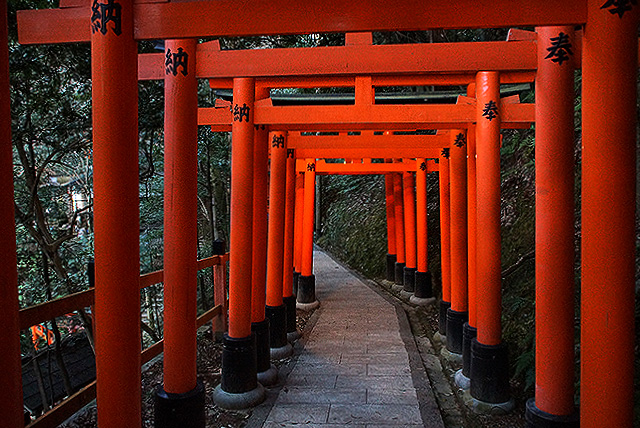 fushimiinari_torii3.jpg