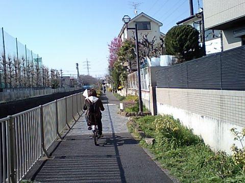 gm_kandagawa.jpg