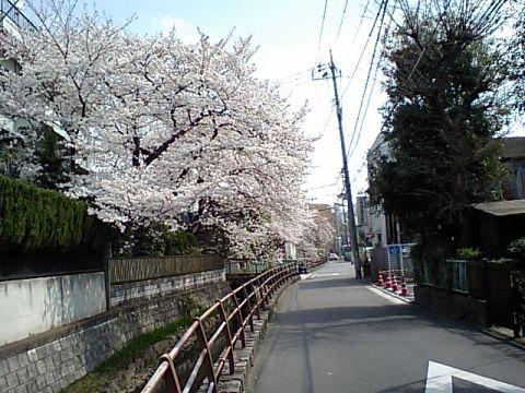 gm_marukogawa.jpg