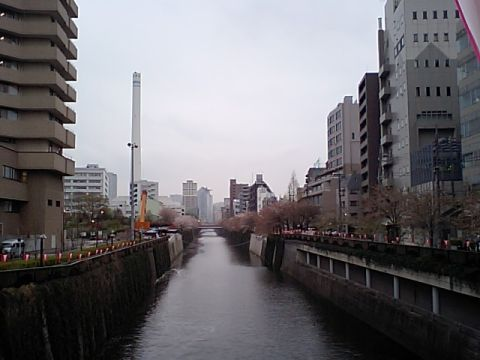 gm_megurogawa_gomi.jpg