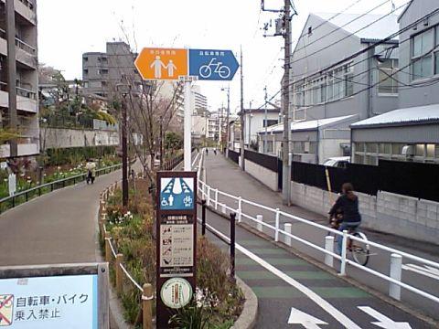 gm_megurogawa_ryokudo.jpg