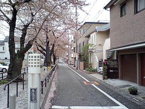 gm_tachiaigawaryokudo.jpg