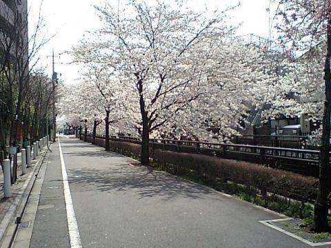 gm_tanisawagawa.jpg