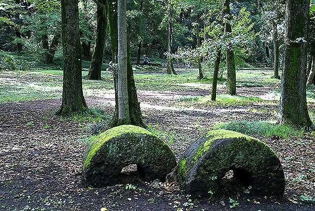 gunmaforest_circlestone.jpg