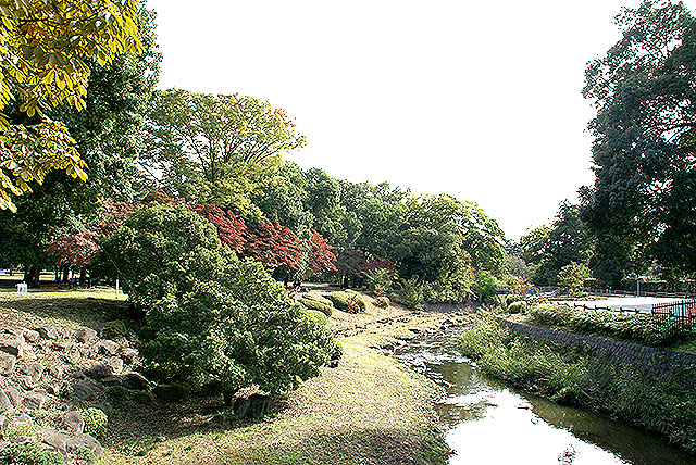 gunmaforest_river.jpg