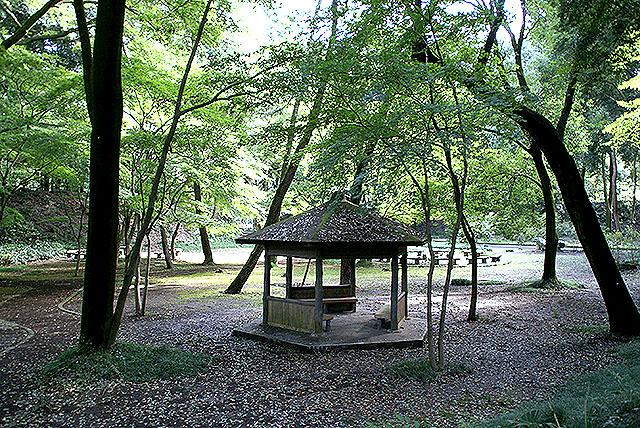 gunmaforest_summerhouse.jpg
