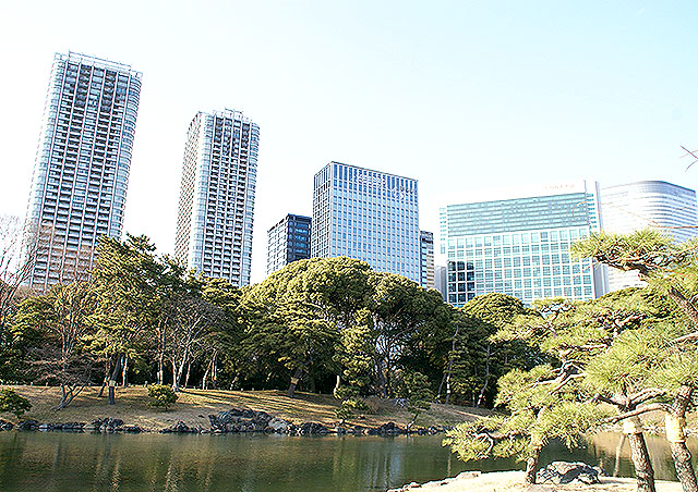 hamarikyu_pond4.jpg