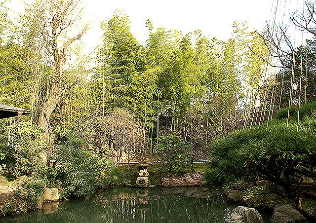 ikegamibaien_bamboos.jpg