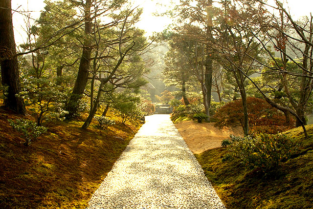 katsurarikyu_road.jpg
