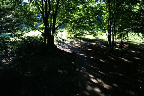 kinuta_park2.jpg