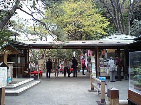 koishikawa_korakuen.jpg