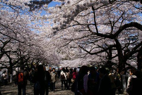 kokyo_yasukuni_st.jpg