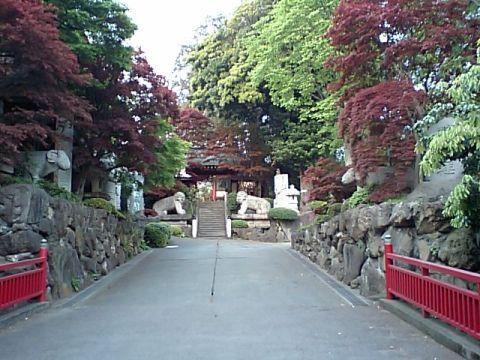 marukogawa.jpg