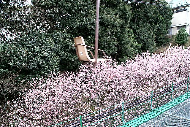 matsuyamajo_lift.jpg