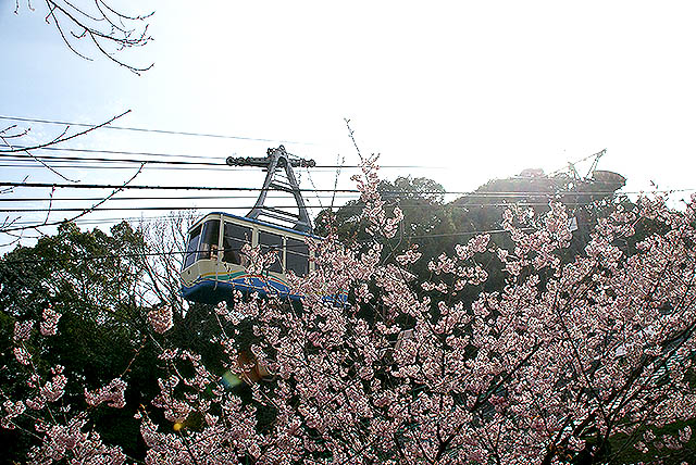 matsuyamajo_ropeway.jpg
