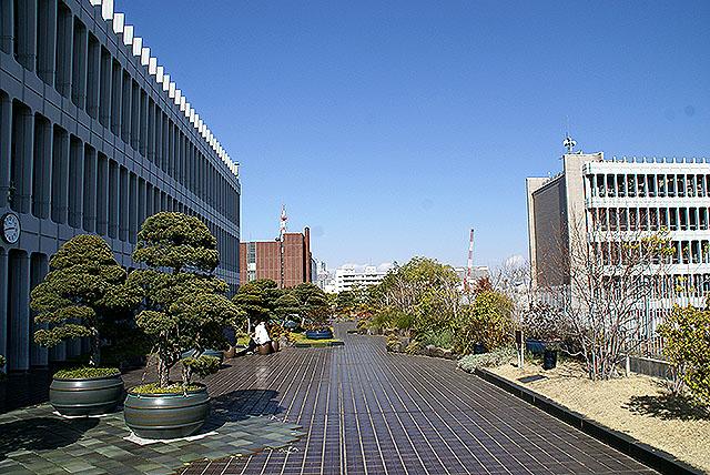 megurokuyakusho_togogarden.jpg