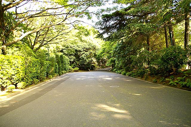 meguroteien_road.jpg