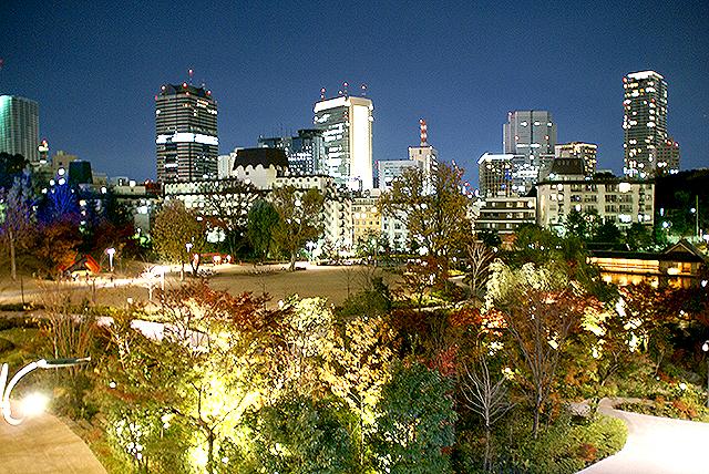 midtown_night_park.jpg