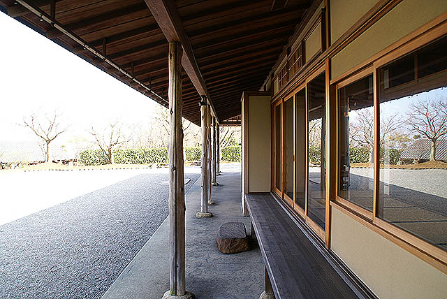 moa_tearoom.jpg