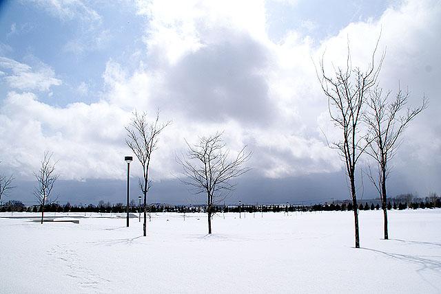 moerenuma_snowfield.jpg