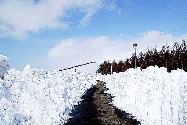 moerenuma_snowroad.jpg