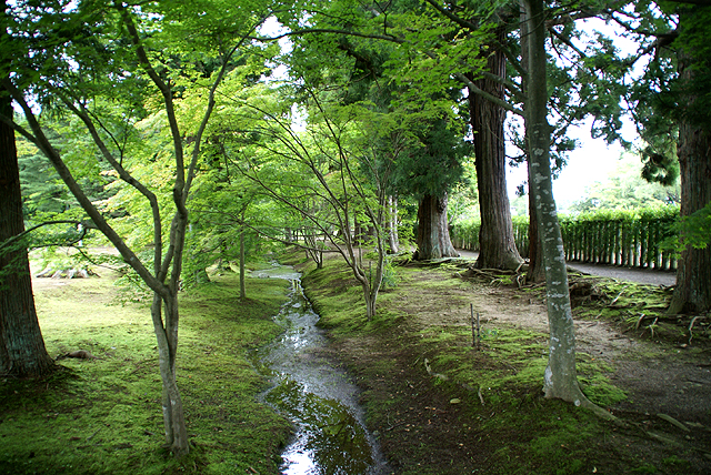 motsuji_green3.jpg