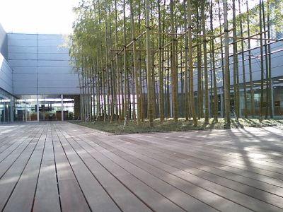 nact_garden.jpg