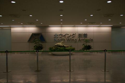 narita_airport1_arrival.jpg