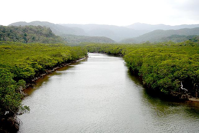 okinawa_river.jpg