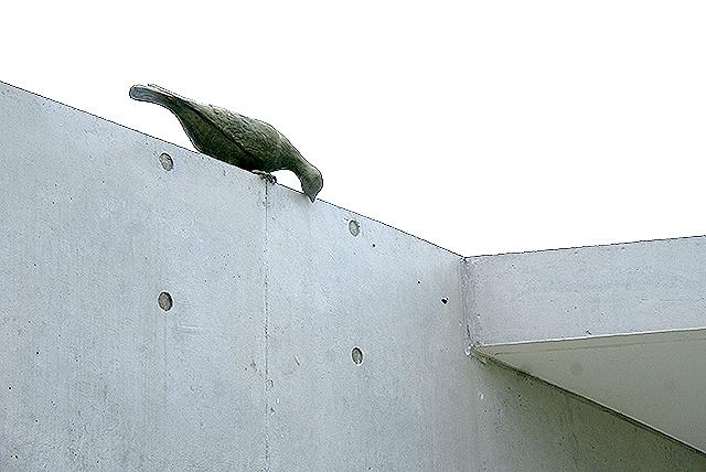 omishima_iwamuseum_bird.jpg