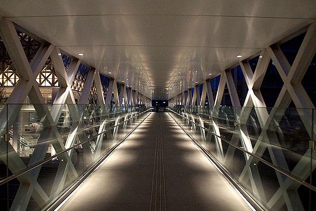 opam_path_night.jpg