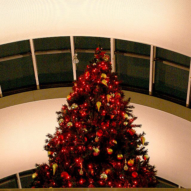 operacity_christmas2.jpg