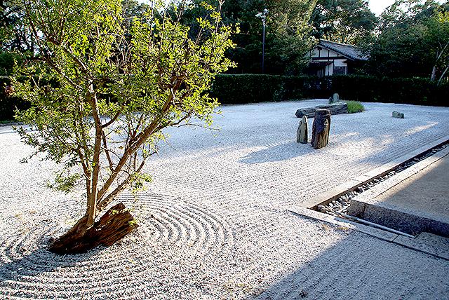 shidoji_musentei1.jpg