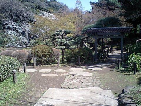 shin_edogawa_park.jpg