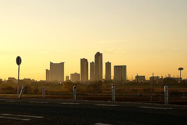 sunrise_tamariver3.jpg