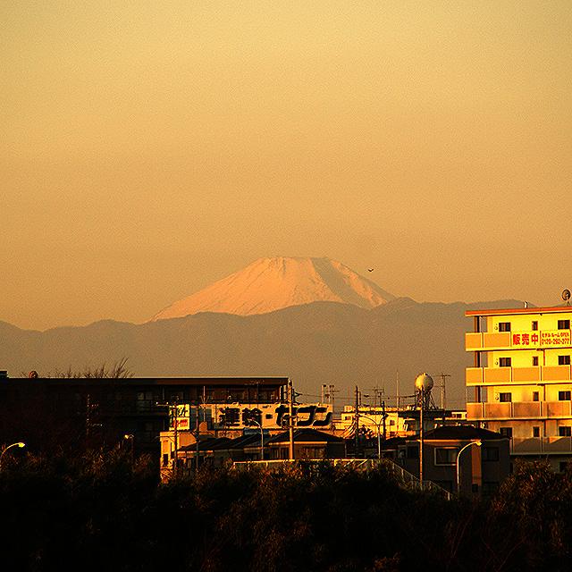 sunrise_tamariver4.jpg