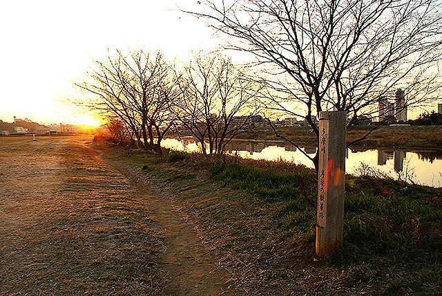 sunrise_tamariver5.jpg