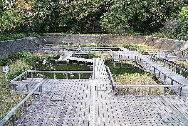 tamagawast_tamagawadai_pond.jpg