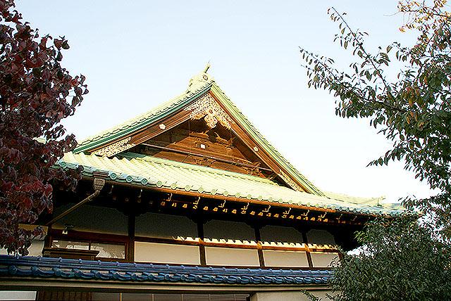 tamagawast_tokoin_side.jpg