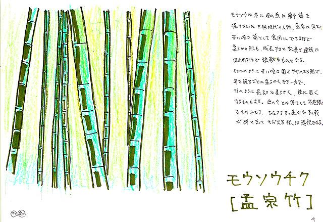 todoroki_plant_sketch4.jpg