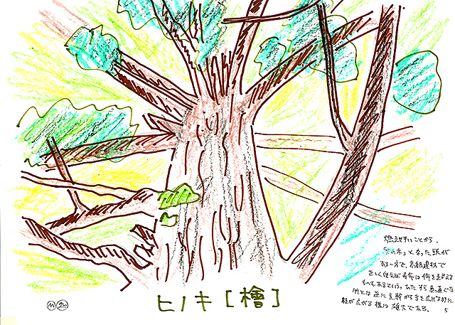 todoroki_plant_sketch5.jpg