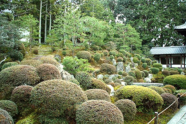 tofukuji_kaizando_garden.jpg